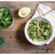 salade_quinoa_avocat_pistache
