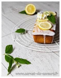 cake_citron_pavot
