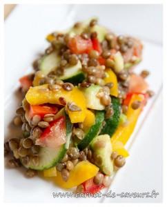 salade_lentilles_poivron